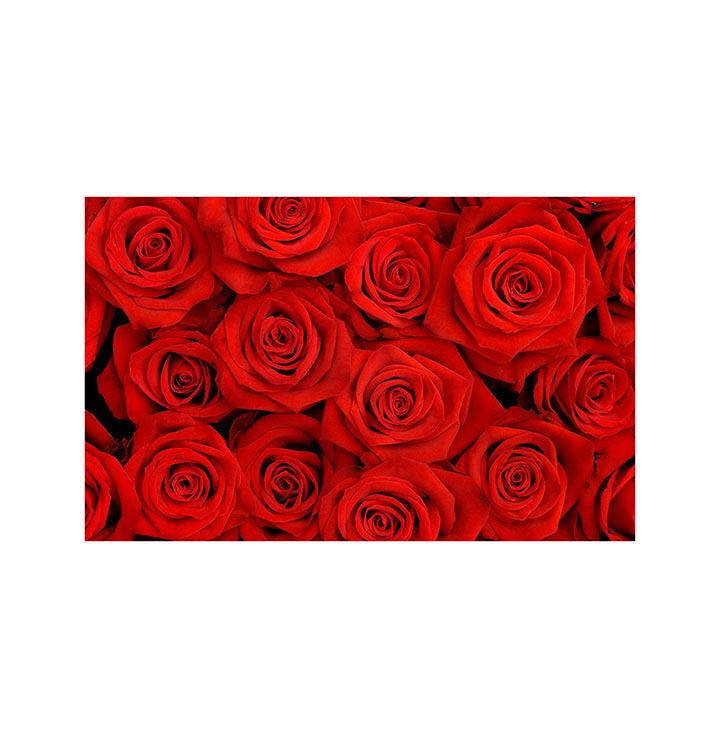 roses sticker wall sticker for home decor