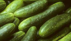 Pole-Cucumber