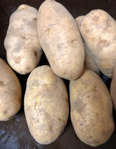Russet Potatoes for Baking