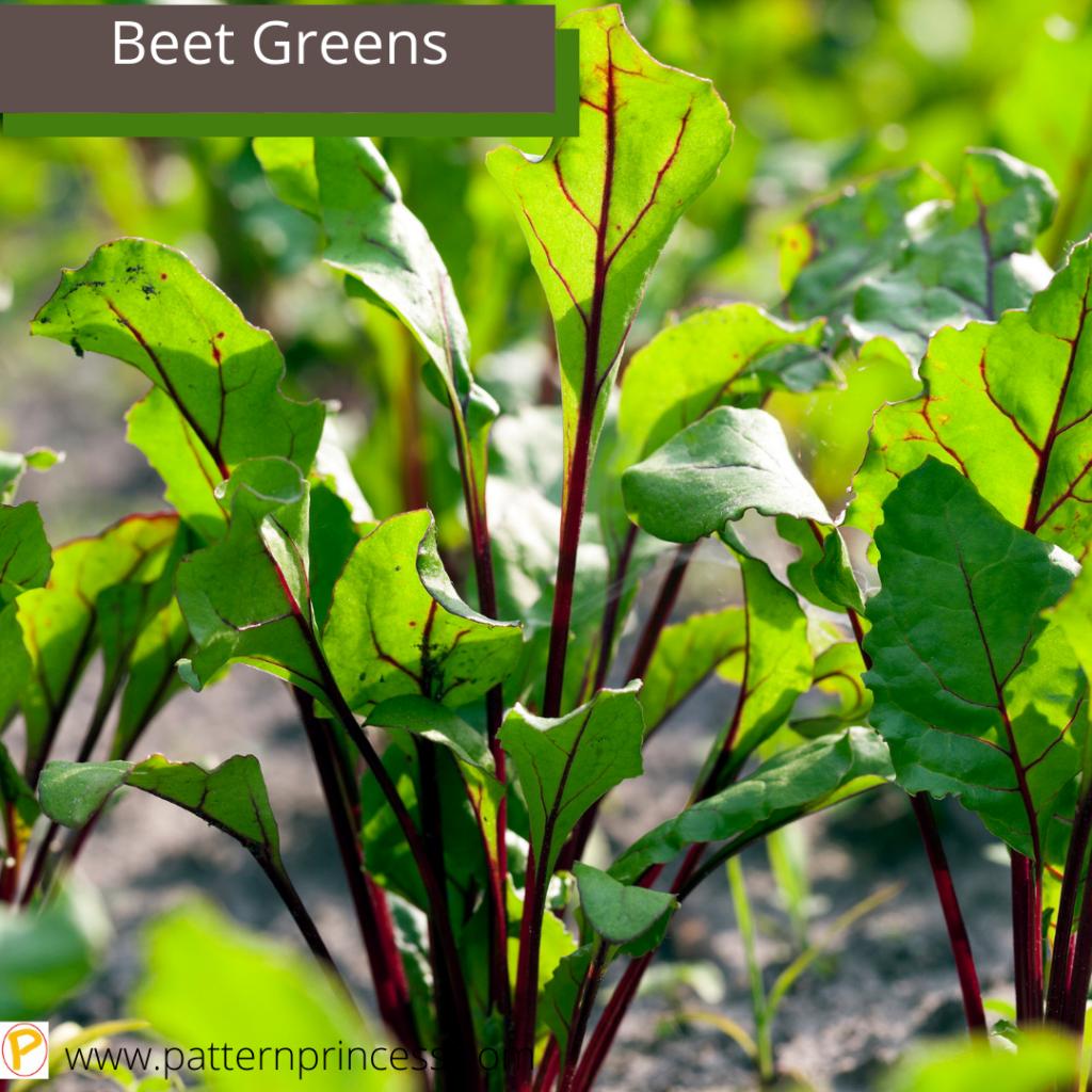 Beet Greens in the Garden