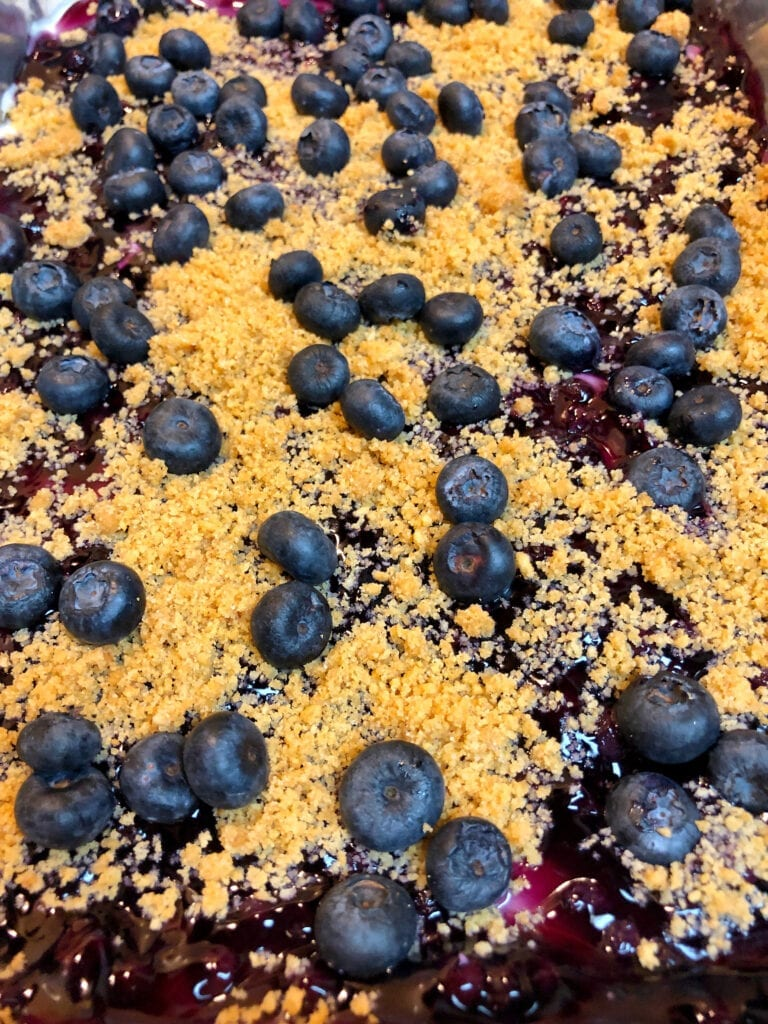 Blueberry Delight with Fresh Blueberries on Top