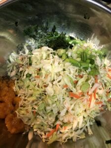 Shredded Cabbage, Fruit, Cilantro, Green Onion