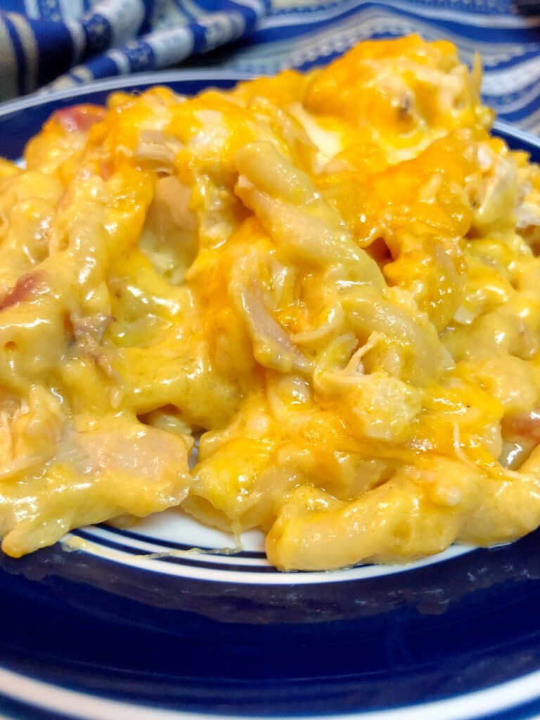 cheesy, chicken and pasta served Best Casserole Recipes - Easy Comfort Food