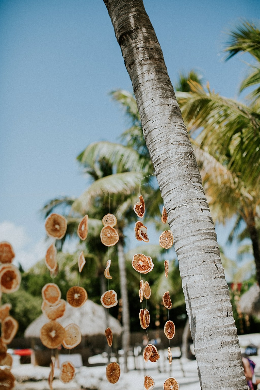 dried oranges wedding decorations