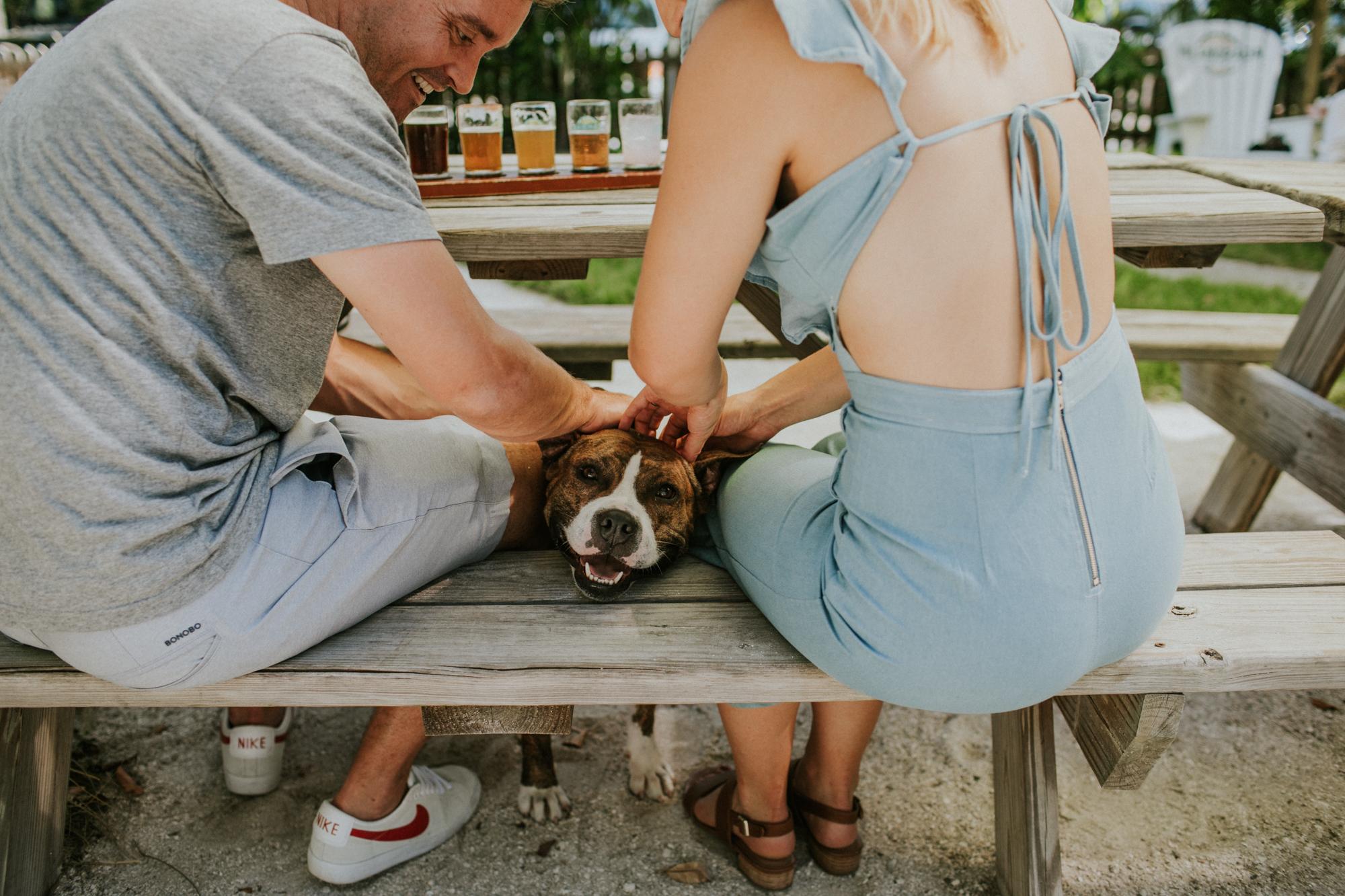 Engaged couple hangs with a cute dog in Islamorada