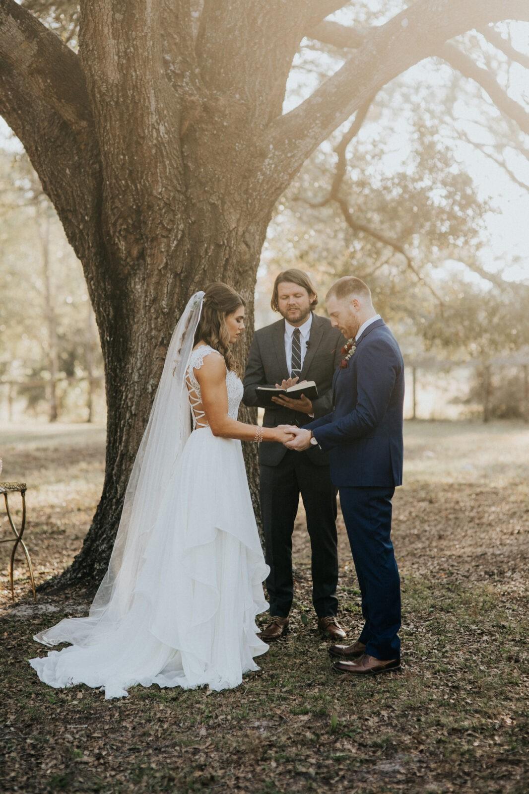 wedding under an oak tree
