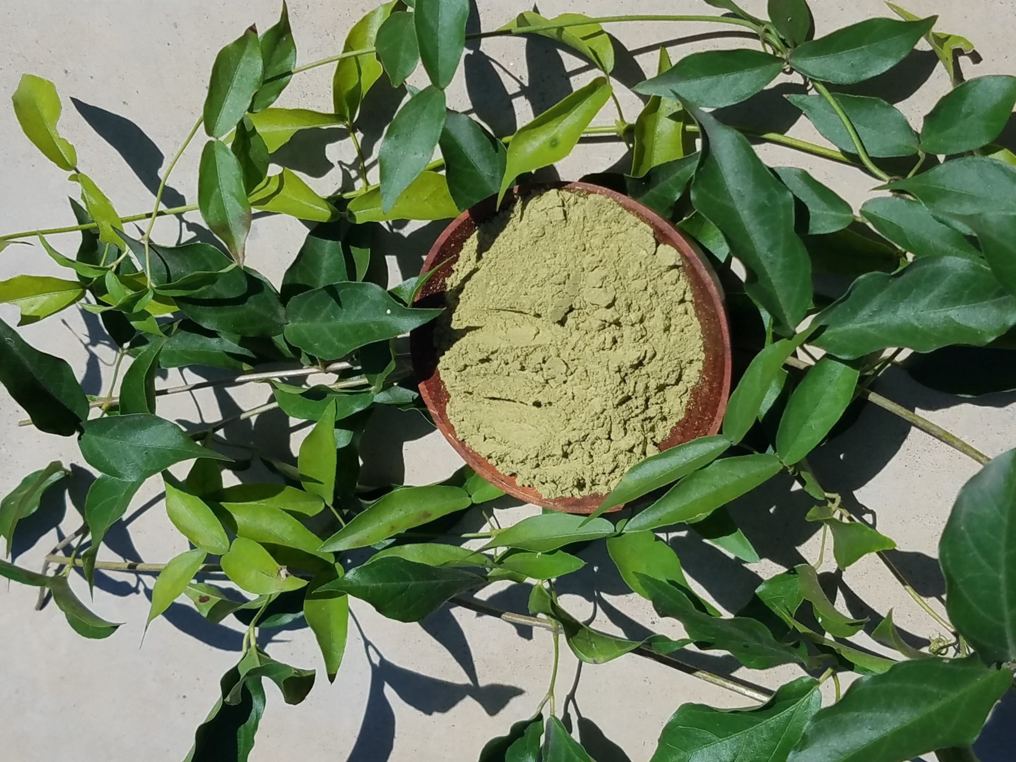 What is The Best Kratom for Anxiety?