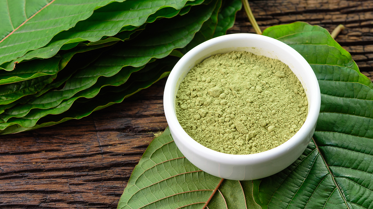 The Ultimate Guide To All Of The Kratom Strains