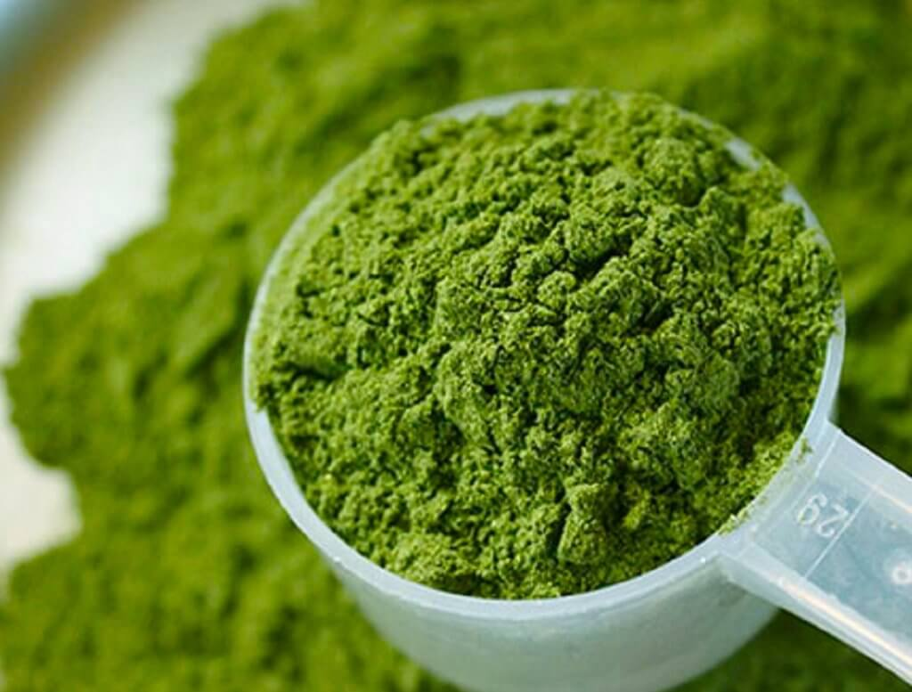 Kratom Reviews: Helping You Know More About This Product