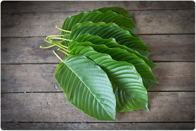 Kratom Is One Of The Only Effective Measures For Fighting The War On Drugs, And The Government Should Be Promoting Kratom Instead Of Trying To Ban It