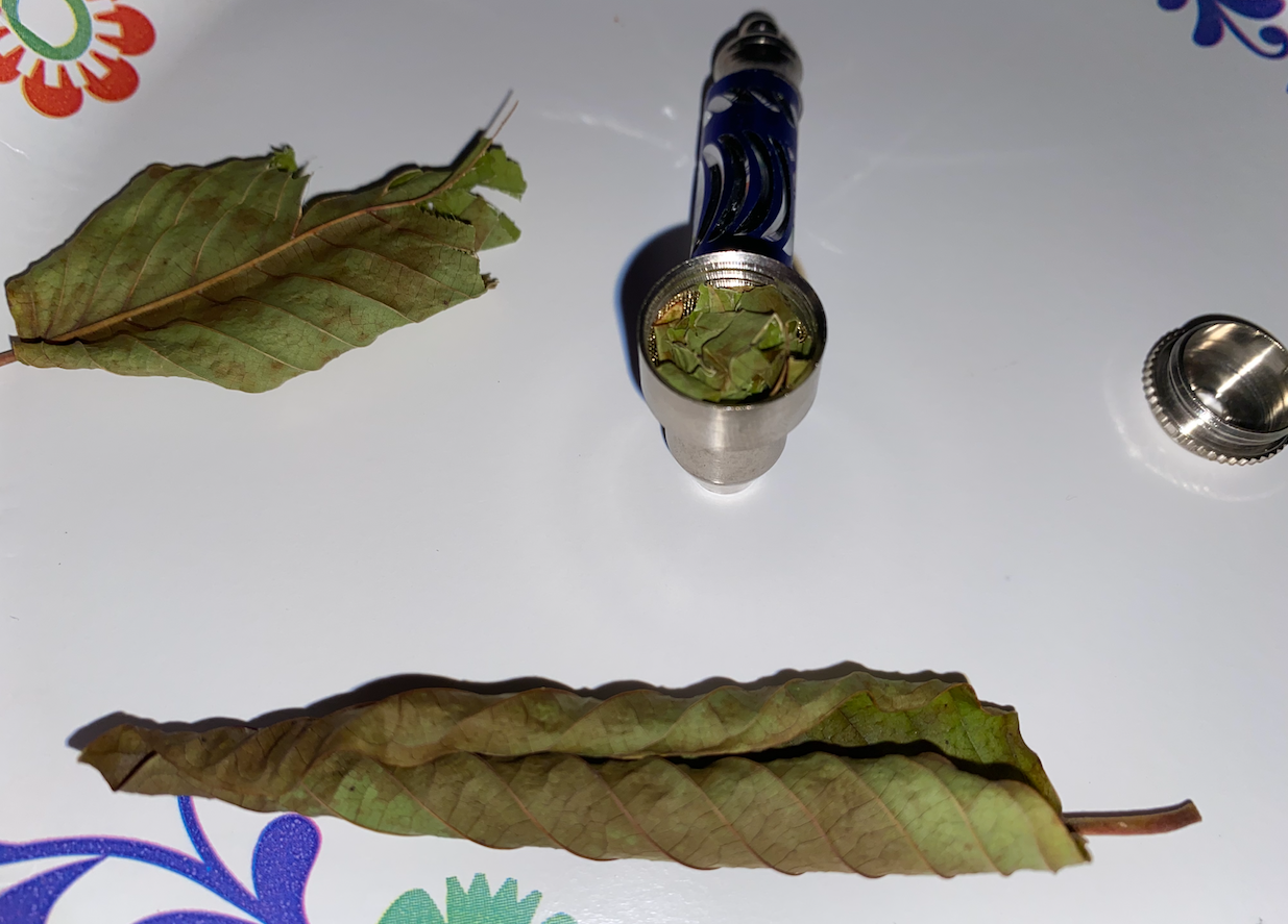 Smoking Kratom Leaves Experiment