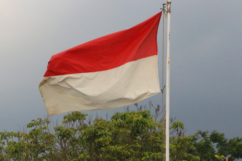 The Supply Of Kratom In The United States Could Be Completely Obliterated In Just 1.5 Years Due To The 2022 Indonesian Kratom Ban, Although There Is Some Hope