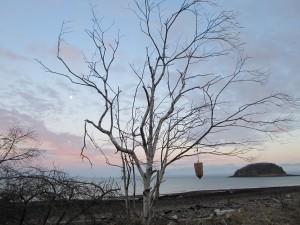 Moonrise at Spencer's Island