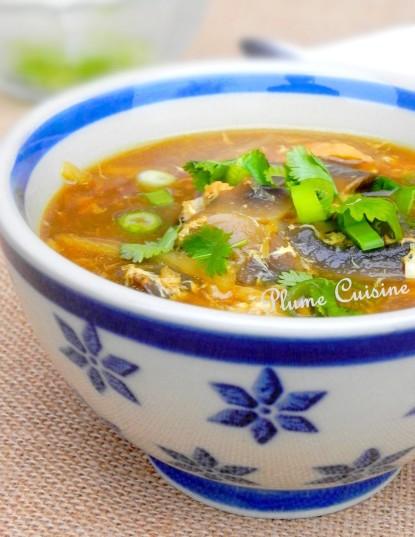 soupe-poulet-chinoise-sichuan