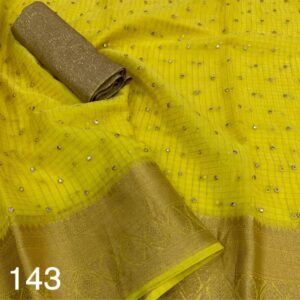 pure_organza _chex_dt_143_Deepanandan_suppliers_sarees_6