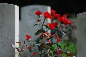 cemetery flower
