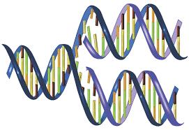 DNA string images