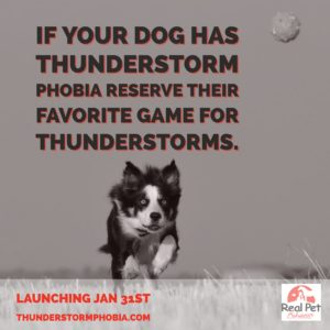 thunderfetch