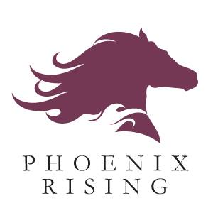 Phoenix Rising Equine Assisted Learning