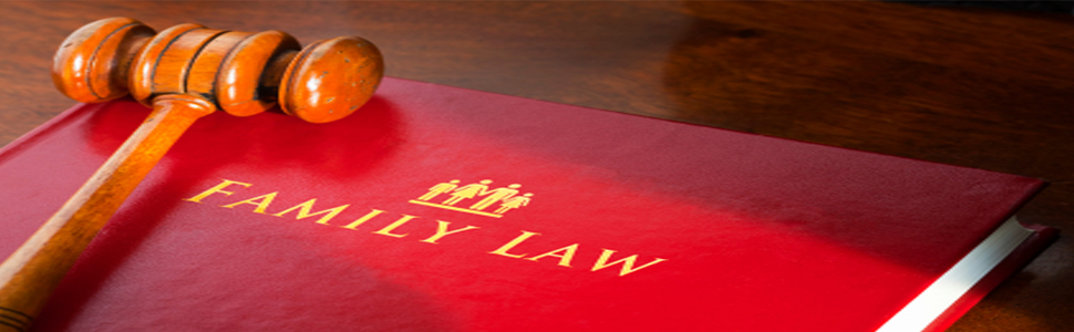 gavel-family-law-book