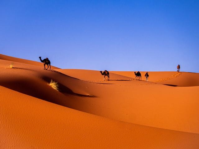 merzouga desert sahara maroc