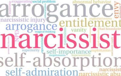 I Was Married To a Narcissist. Are You?