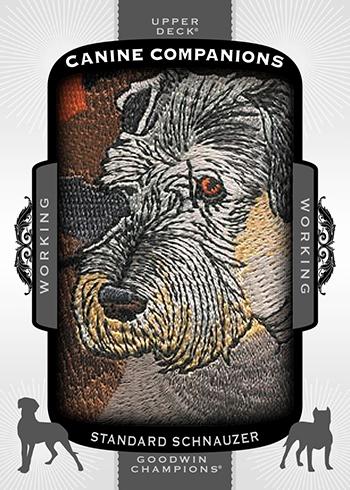 2017-Goodwin-Champions-Canine-Companions-CC58-Stsandard-Schnauzer