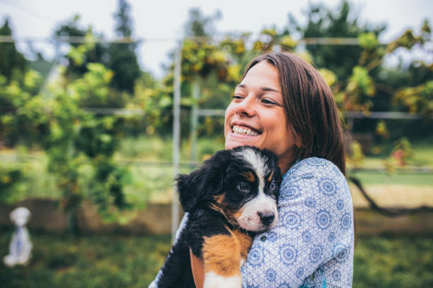 Introducing a rescue pet into your home