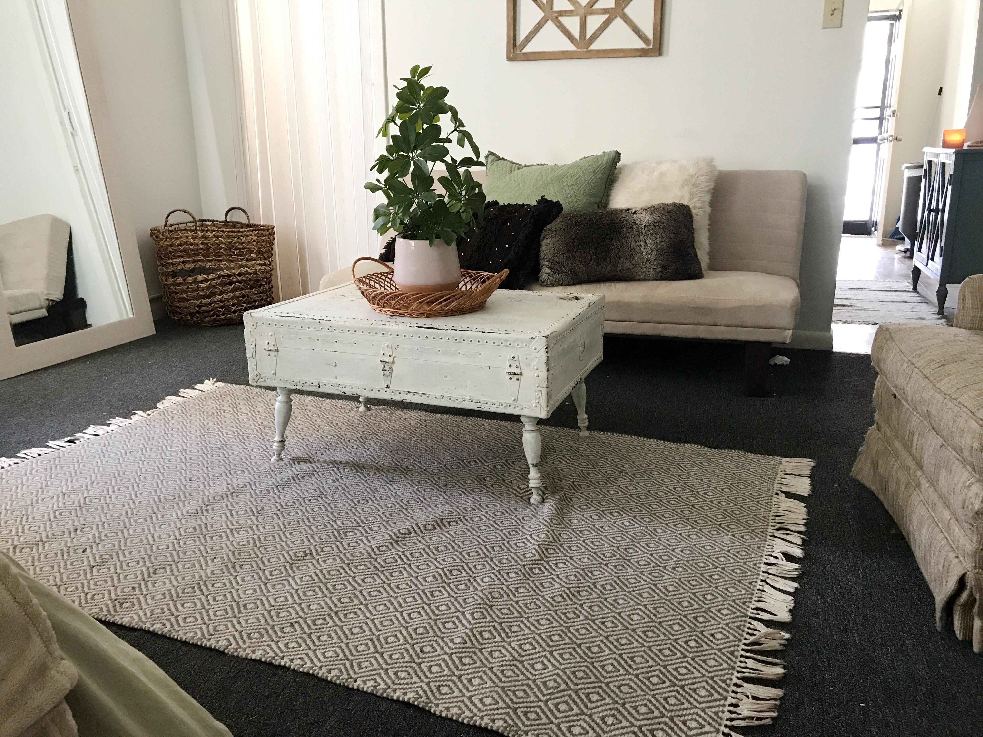 college interior design: area rug