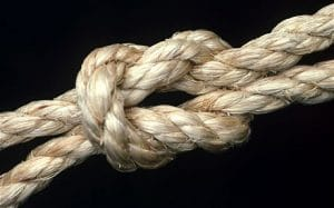 Knot 01