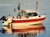 sea-legend-ht-22-005