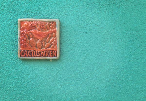 cactus wren exterior