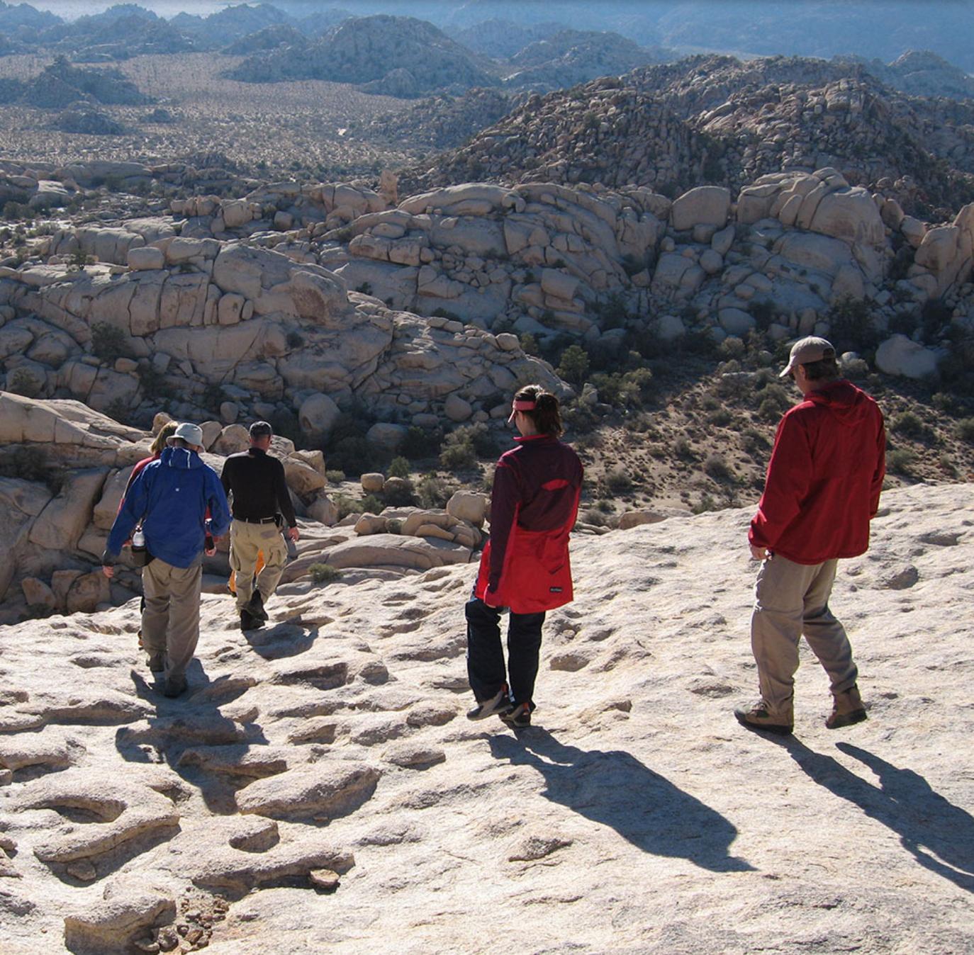 Joshua Tree Rocks