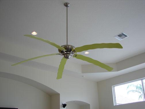 Green Lexi Fan
