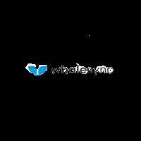 Whalesync 200x200 no bg1