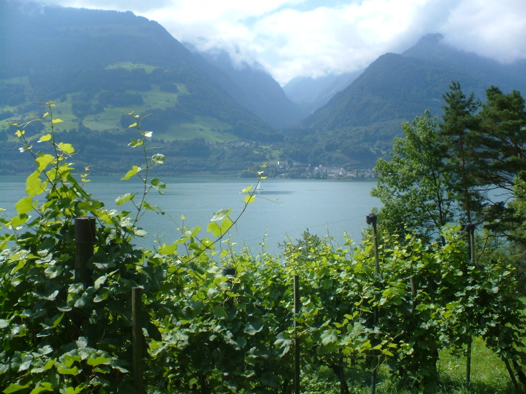 switzerland still lake