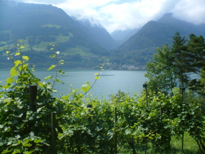 switzerland still lake