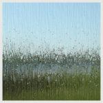 Shower Glass Options Rain
