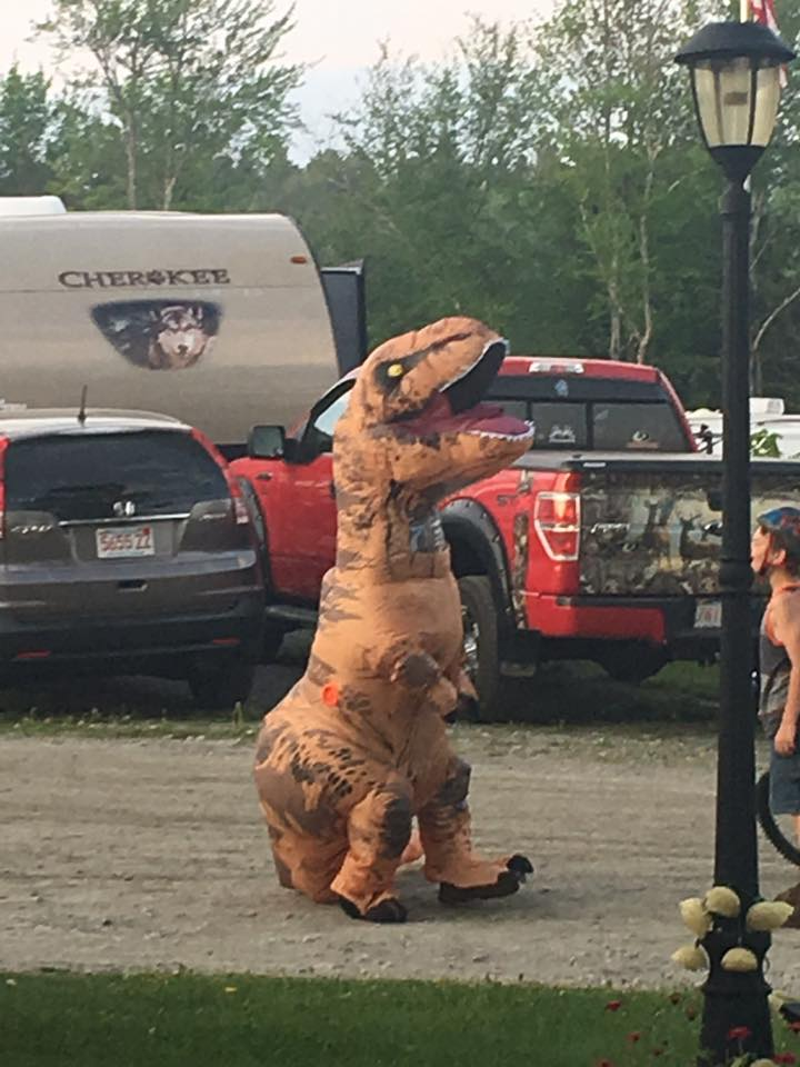 Dino at Maplewoods