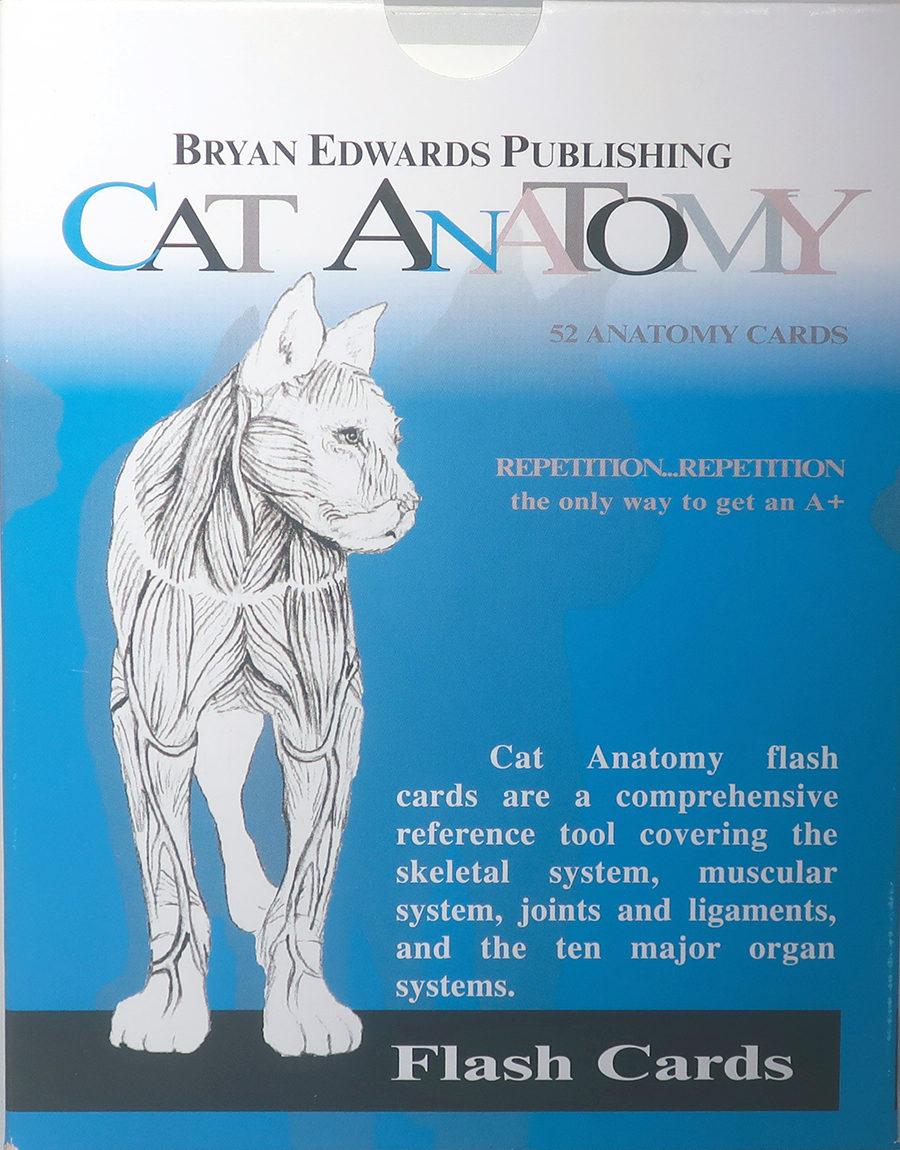Cat - Dog Anatomy flash cards set