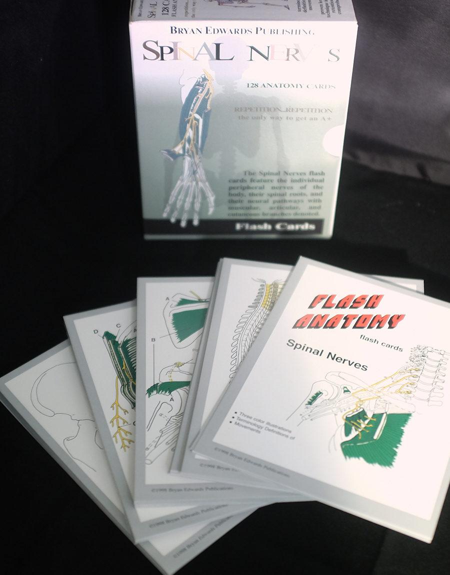 Spinal Nerves flashcards - bryanedwards.com