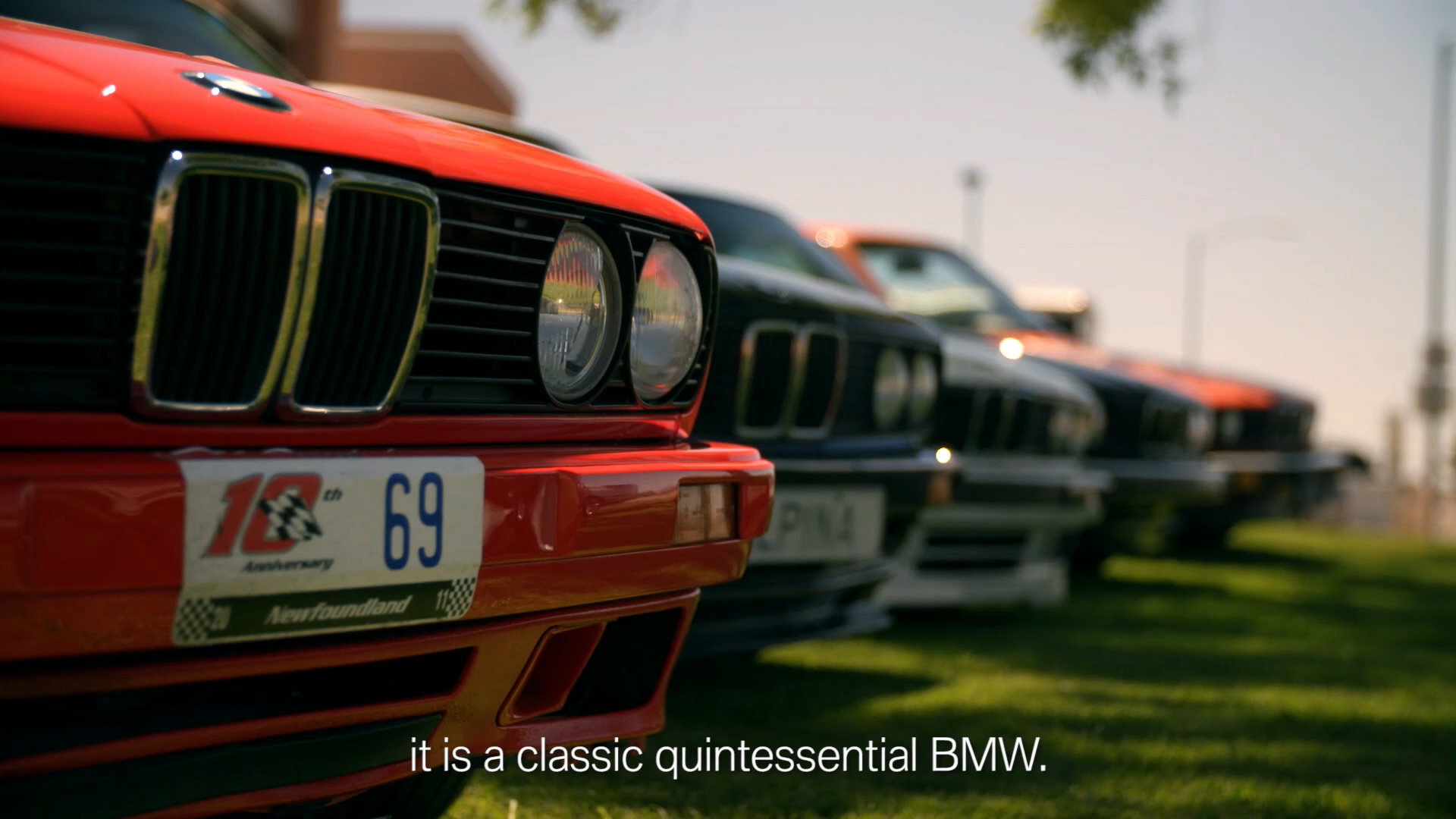 Line of BMW's