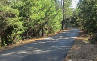Palakta Trail