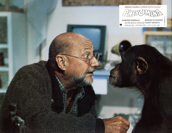 Donald Pleasence making faces at the chimp in Phenomena