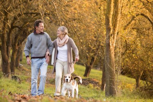 How Walking Helps Promote Mental Health