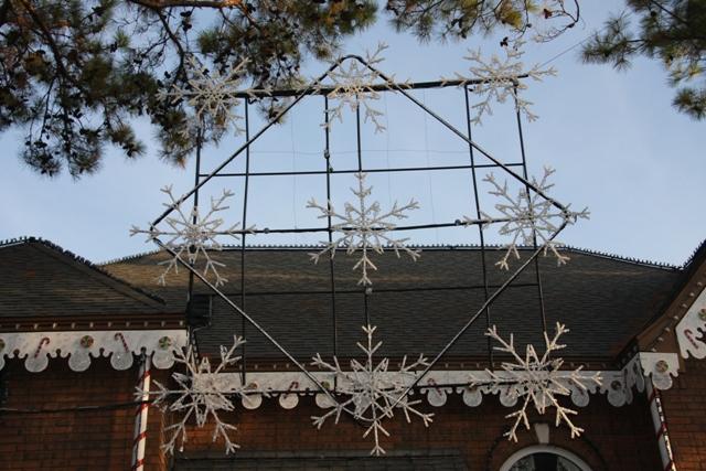 Cosmic Snowflake 2009