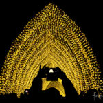Cathedral Of Light at Vivid Festival 2016, by Mandylights, aka Richard Neville from the UK | Foraggio Photographic