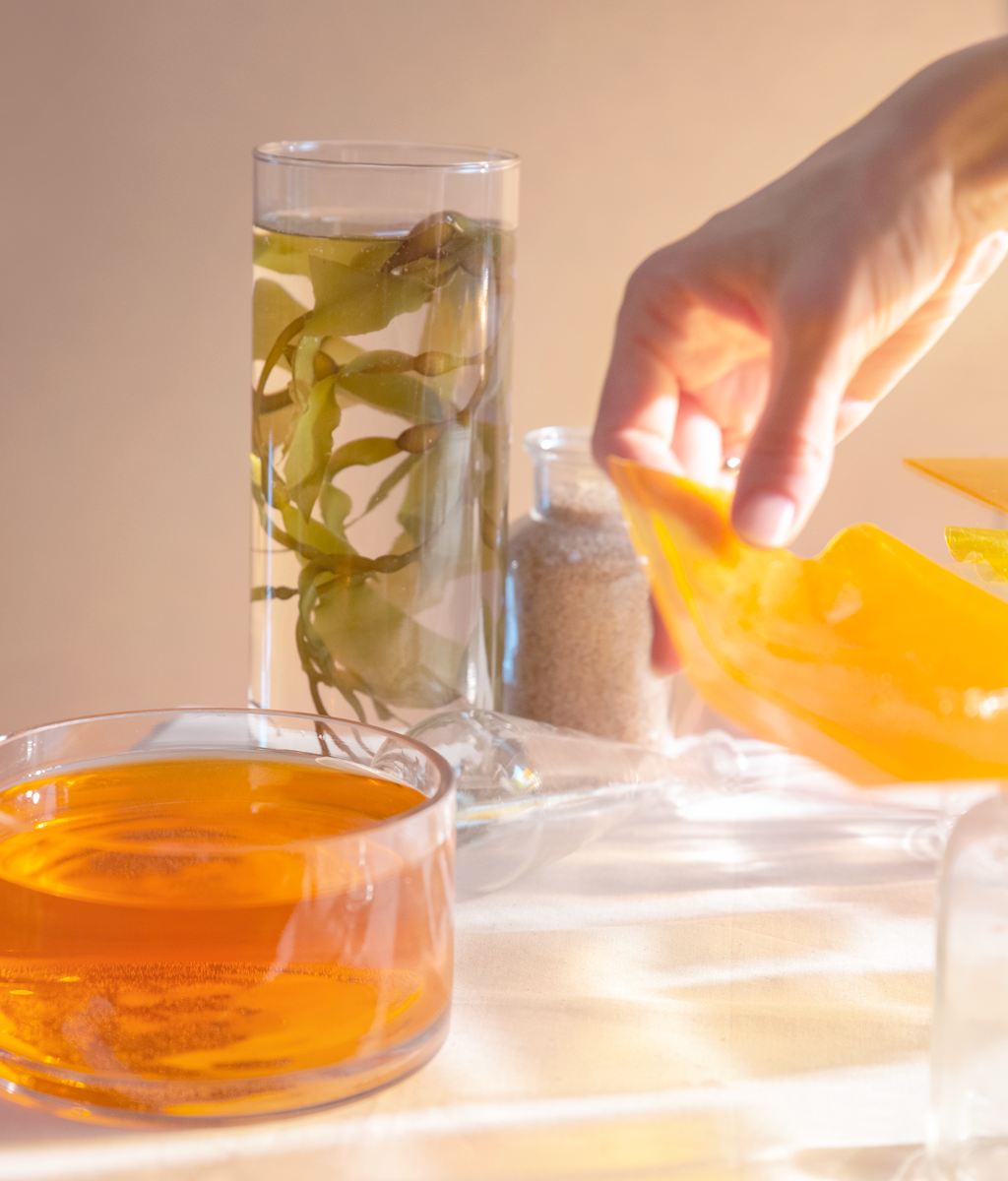 Seaweed-Bioplastic-Experiment-1