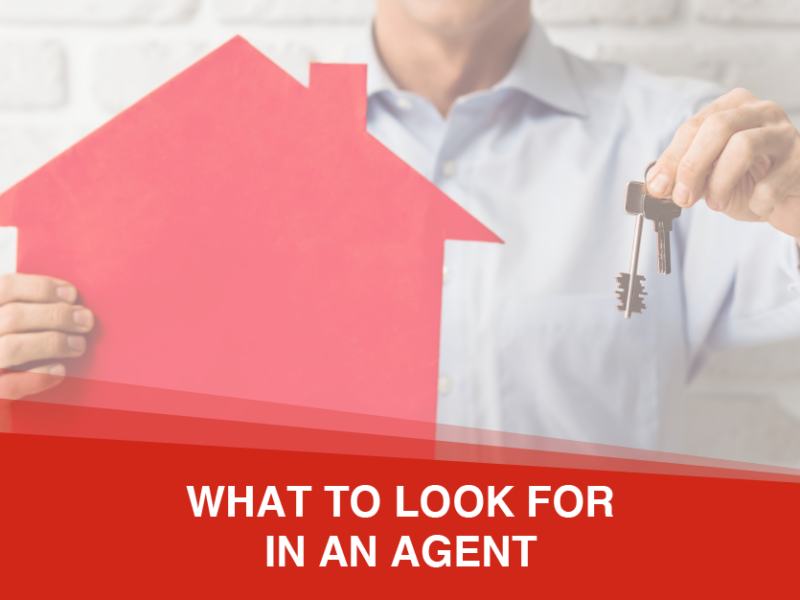What To Look For In A Real Estate Agent If You Are Buying Or Selling