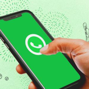 WhatsApp Business com múltiplos usuários